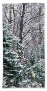 Snow-covered Forest, Wisconsin, Usa Bath Towel