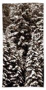 Snow-laden Forest Bath Towel