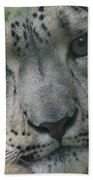 Snow Leopard 10 Bath Towel