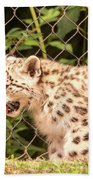 Snow Leopard Cub Bath Towel