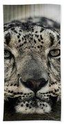 Snow Leopard Upclose Bath Towel