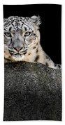Snow Leopard Xxii Bath Towel