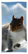 Snow Squirrel Bath Towel