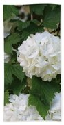 Snowball Tree With Delicate Leaves Bath Towel