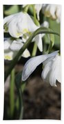 Snowdrops Bath Towel