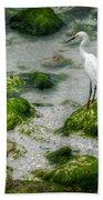 Snowy Egret On Mossy Rocks Bath Towel