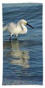 Snowy Egret On The Hunt II Bath Sheet