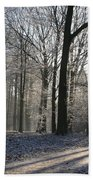 Mystical Winter Landscape Bath Towel