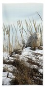 Snowy Owl In Dunes #2 Bath Towel