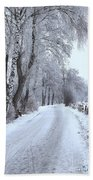Snowy Path Bath Towel