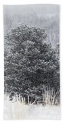 Snowy Pines In The Pike National Forest Bath Towel