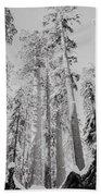 Snowy Sequoias At Calaveras Big Tree State Park Black And White 3 Bath Towel