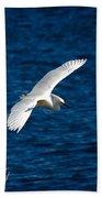 Soaring Snowy Egret  Bath Towel