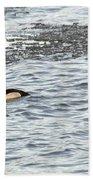 Solo Duck Bath Towel