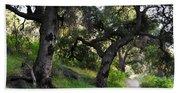Solstice Canyon Live Oak Trail Bath Towel