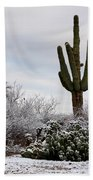 Sonora Desert Winter Bath Towel