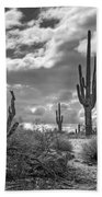 Sonoran Desert In Black And White  Bath Towel
