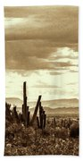 Sonoran Desert Mountains And Cactus Near Phoenix Bath Towel