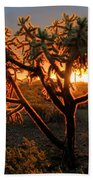 Sonoran Desert Sunrise 2 Bath Towel