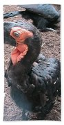 Southern Ground Hornbill Bath Towel