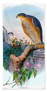 Sparrow Hawk Antique Bird Print Joseph Wolf Birds Of Great Britain  Bath Towel