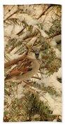 Sparrow In Winter Iv - Textured Bath Towel