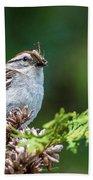 Sparrow With Lunch Bath Towel