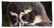 Spectacled Owl Portrait 2 Bath Towel