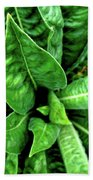 Spectacular Green Foliage Hand Towel