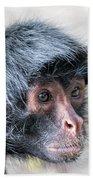 Spider Monkey Face Closeup Bath Towel