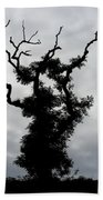 Spooky Tree Hand Towel