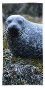 Spotted Coat Of A Harbor Seal Bath Towel