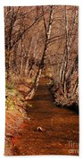 Spring At Red Rock Crossing Hand Towel