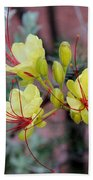 Spring Blooms Yellow Red 052814a Bath Towel