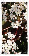 Spring Blossoms Macro Bath Towel