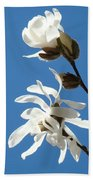 Spring Blue Sky Floral Art Print White Magnolia Tree Baslee Troutman Bath Towel