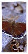 Spring Butterfly  Bath Towel