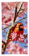 Spring Cardinal Bath Towel