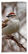 Spring Chipping Sparrow Bath Towel
