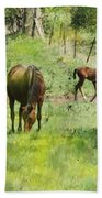 Spring Colts Hand Towel