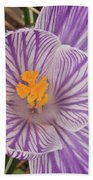 Spring Crocus Bath Towel