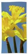 Spring Daffodil Flowers Art Prints Canvas Framed Baslee Troutman Bath Towel