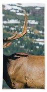 Spring Elk Bath Towel