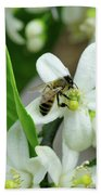 Spring Honey Bee Pollinates Orange Citrus Flower Bath Towel