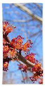Spring Maple Blossoms Bath Towel