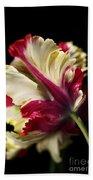 Spring Parrot Tulip Bath Towel