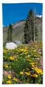 Spring Rocky Mountain Landscape Bath Towel