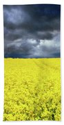 Spring Storm In Australia Bath Towel