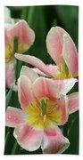 Spring Tulips 151 Bath Towel