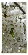 Springtime Abundance - Masses Of White Blossoms Bath Towel